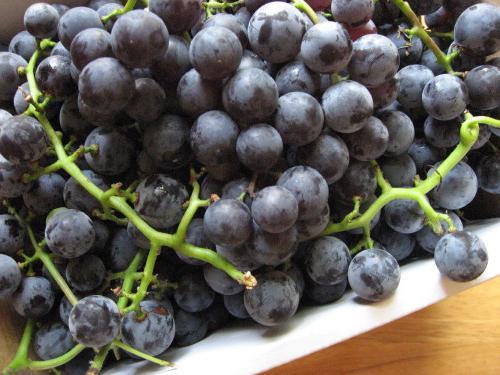 вкусный компот из винограда на зиму без стерилизации