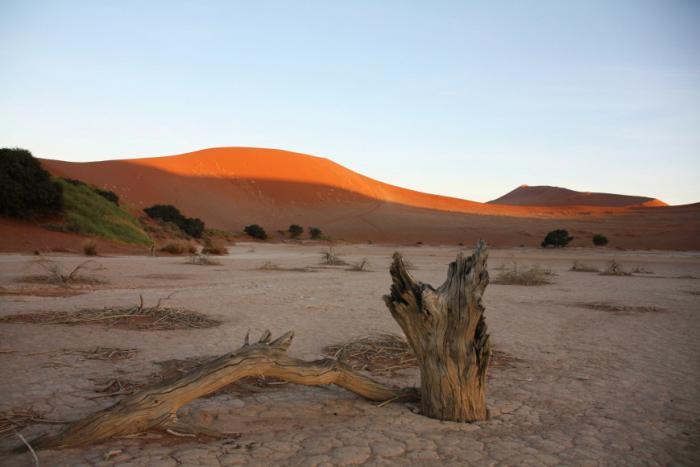 Ученые четверть суши может превратиться в пустыню