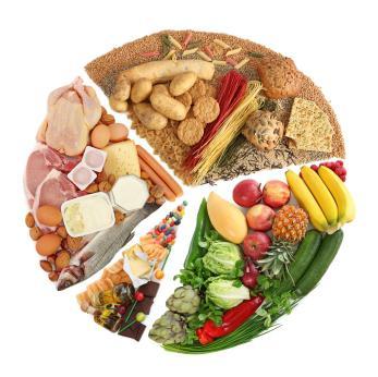 что такое белки жиры углеводы