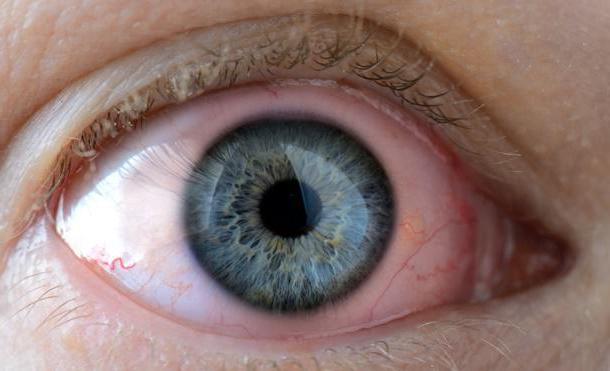 лекарства от глазных паразитов