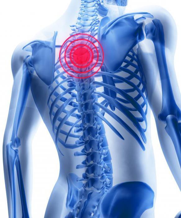 Алфлутоп при шейном остеохондрозе