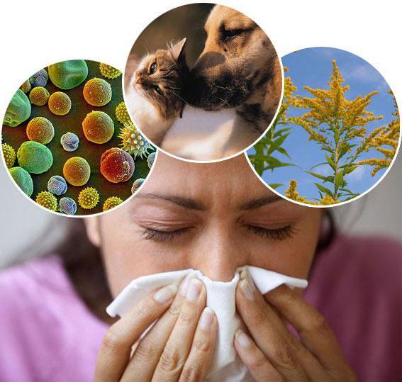 лечить аллергию под глазами