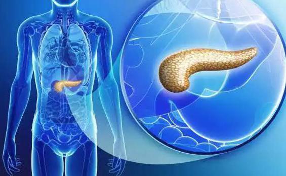 воспаление поджелудочной железы симптомы и лечение
