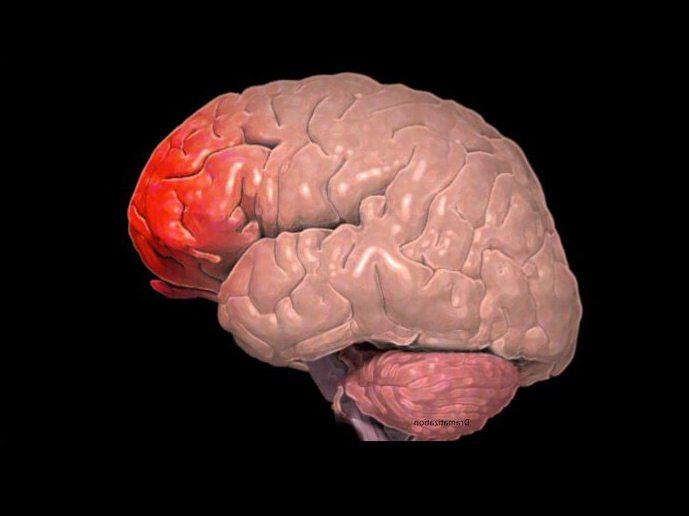 ушиб головного мозга тяжелой степени последствия