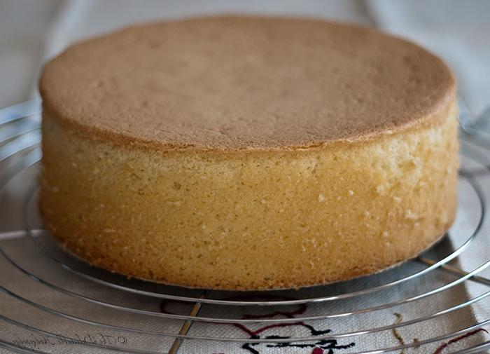 бисквит рецепт для торта