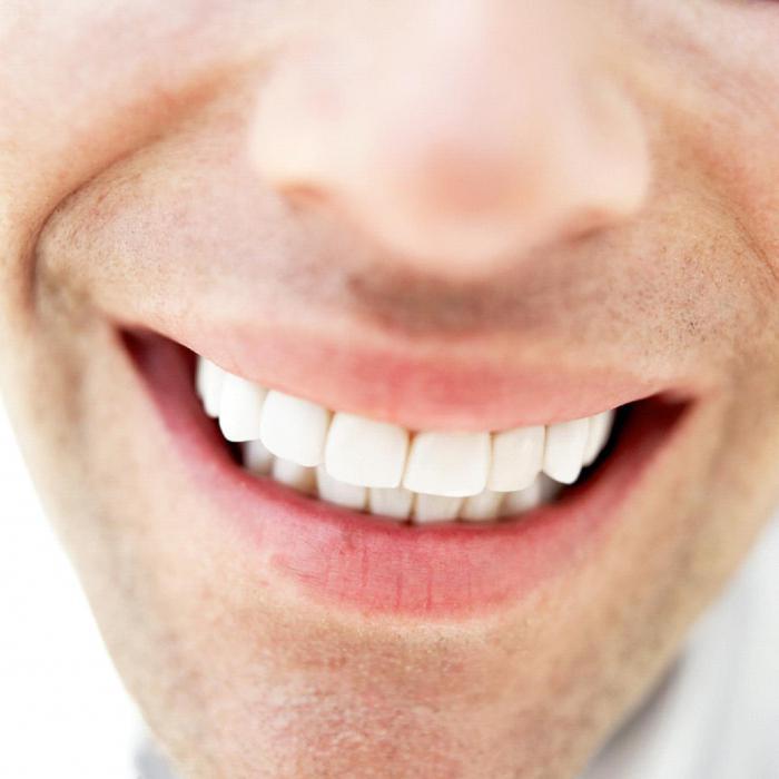 сколько у людей зубов
