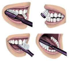 зубная паста парадонтакс инструкция