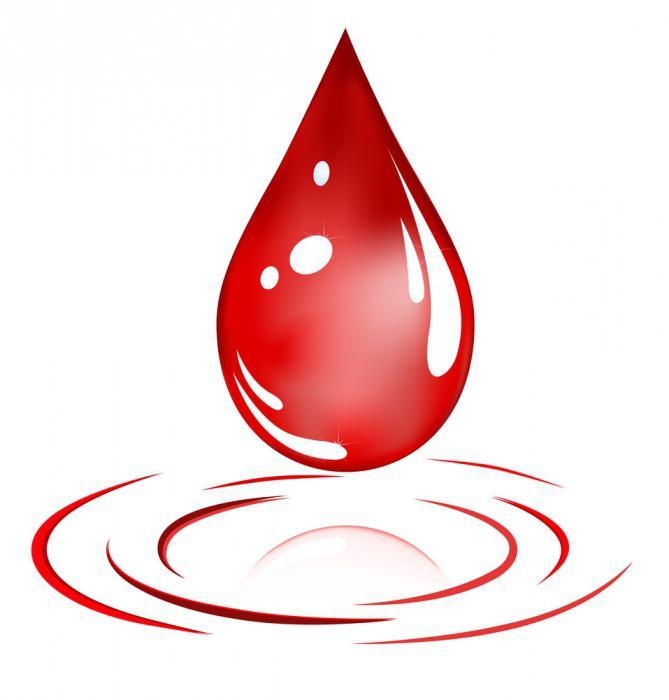как сдать кровь на донорство