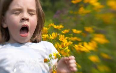 аллергия на календулу фото