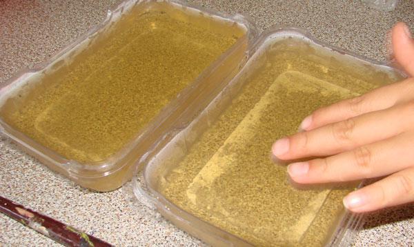 Польза желатина для организма человека как принимать