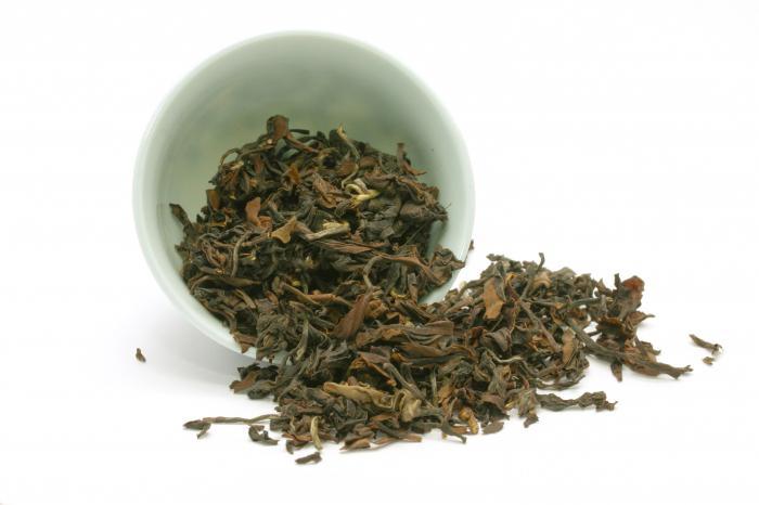 кому и чем полезен зеленый чай