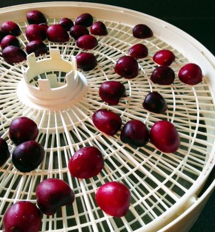вяленая вишня без духовки рецепт