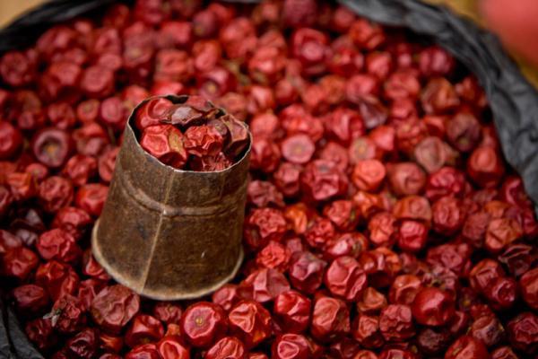 рецепт вяленой вишни с косточками
