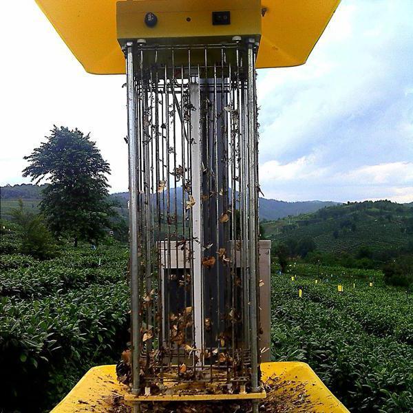 производство инсектицидных ламп