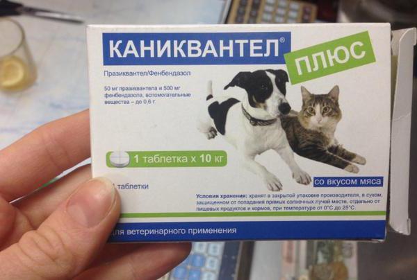таблетки каниквантел