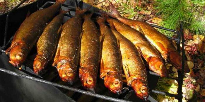 самая крупная рыба на байкальской камчатке