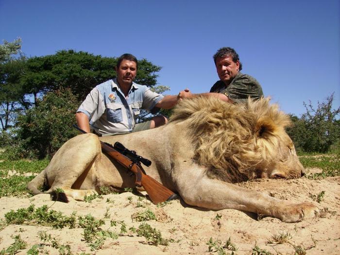 уже охота на львов в марокко картинки видеосъемка, проводимая для