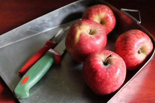 Ранние сорта яблок