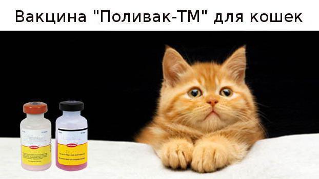 поливак тм для кошек инструкция отзывы