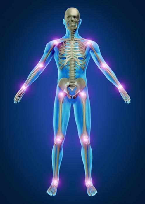артропант крем для суставов отрицательные отзывы