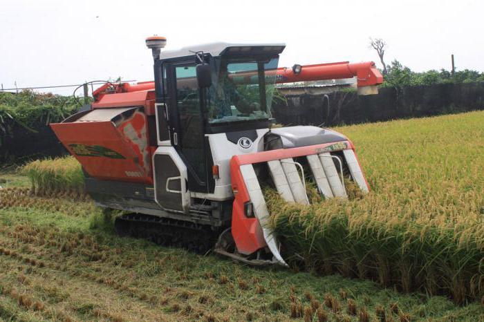 производитель краснодарского риса