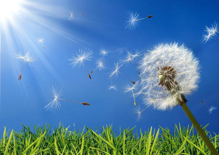 Аллерген-специфическая иммунотерапия — что это?