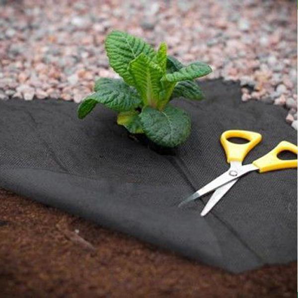 Черная пленка от сорняков