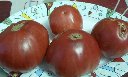Спелые плоды сорта