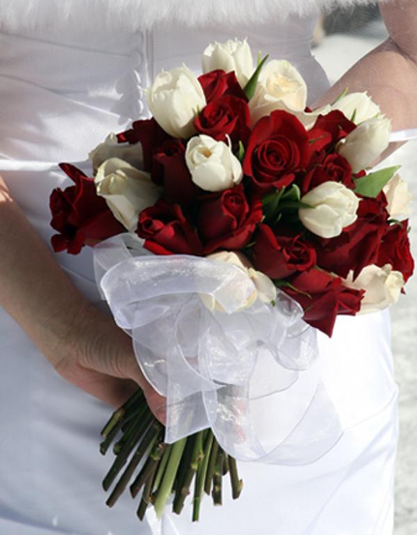 Бордовые и белые розы