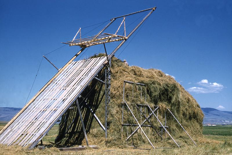 Скирдование сена