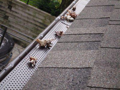 Отливы для крыши своими руками