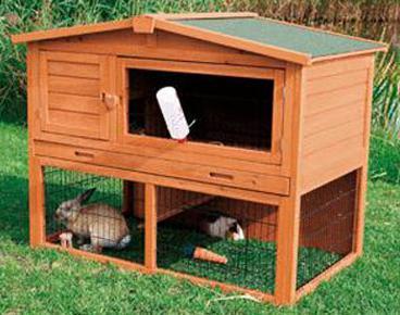 кролики разведение и содержание клетки