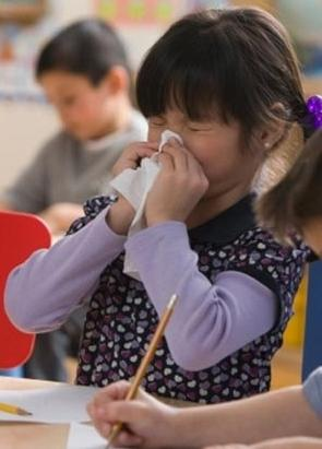 анализ на аллергены животных
