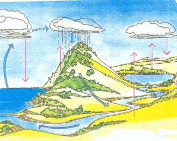 Значение воды в природе схема фото 317