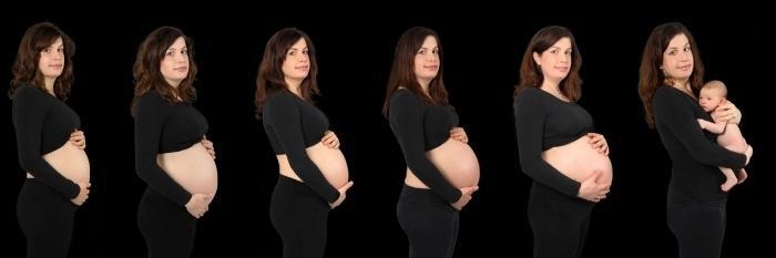 фото беременности по неделям фото: