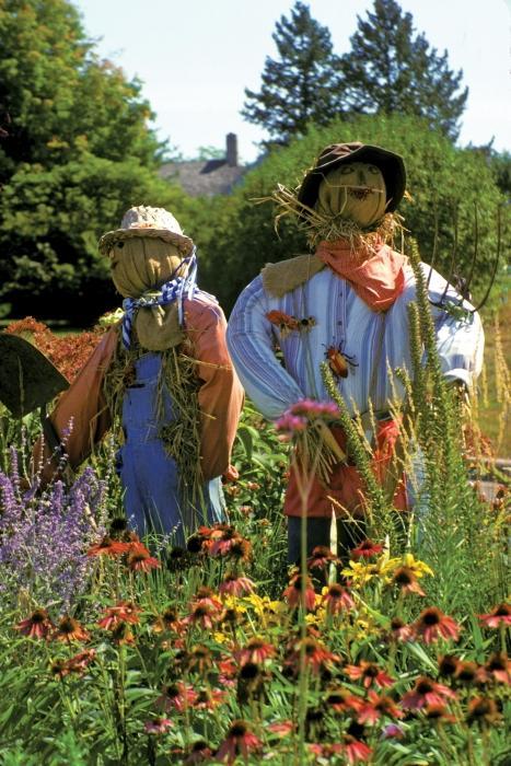 Сделать чучело для сада своими рукам фото 285