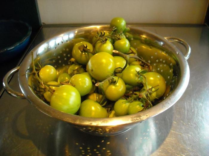 Засолка зеленых помидоров
