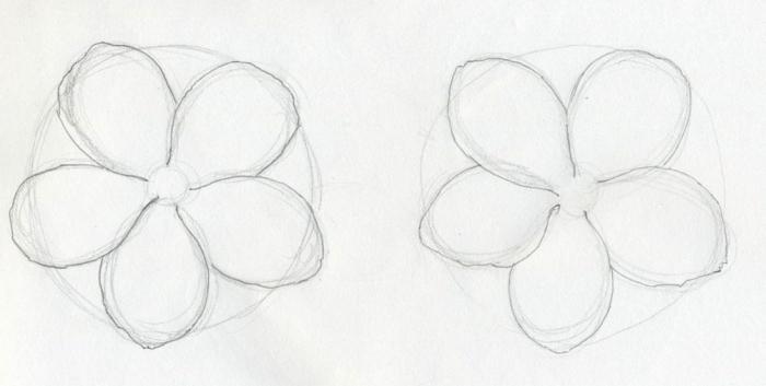 эскизы цветов карандашом: