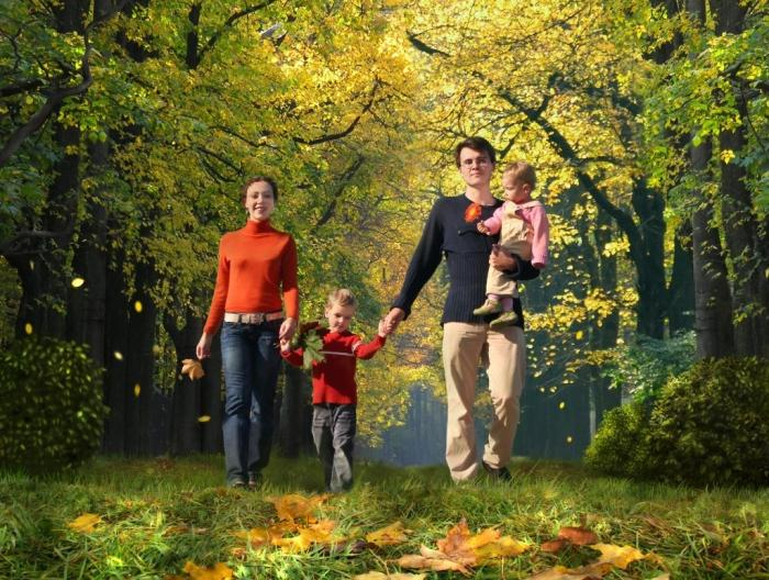 Физическое воспитание детей дошкольного возраста, его компоненты