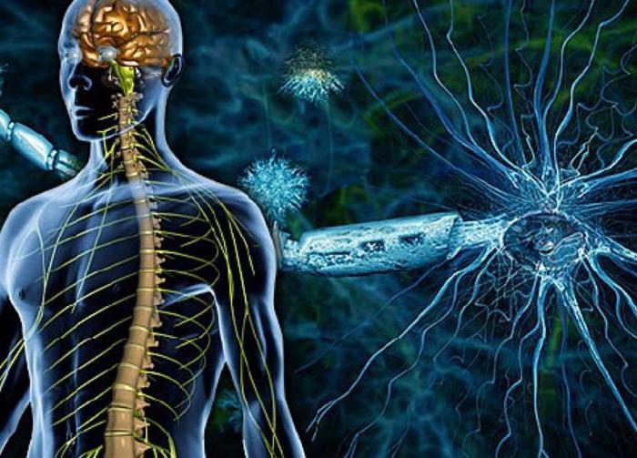 рассеянный склероз лечение в москве