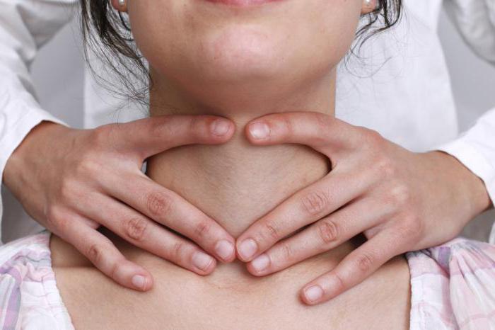 щитовидная железа расположение в организме