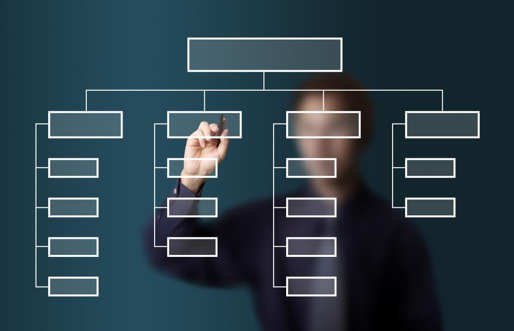 Organization Standards