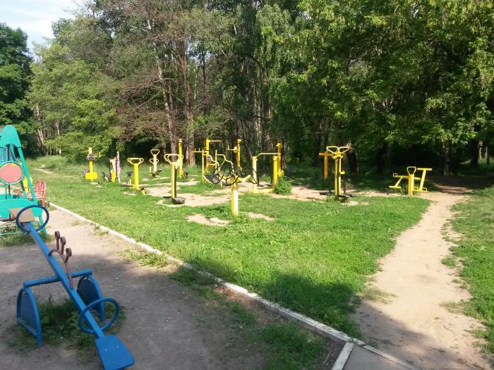 парк дубки фото