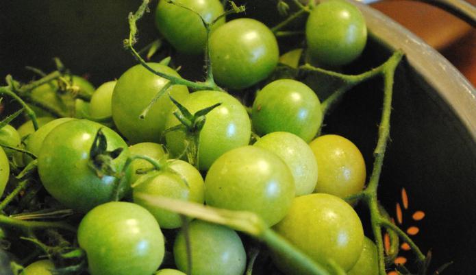 Зеленые помидоры под капроновой крышкой рецепт