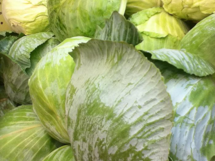 хранение капусты в пищевой пленке