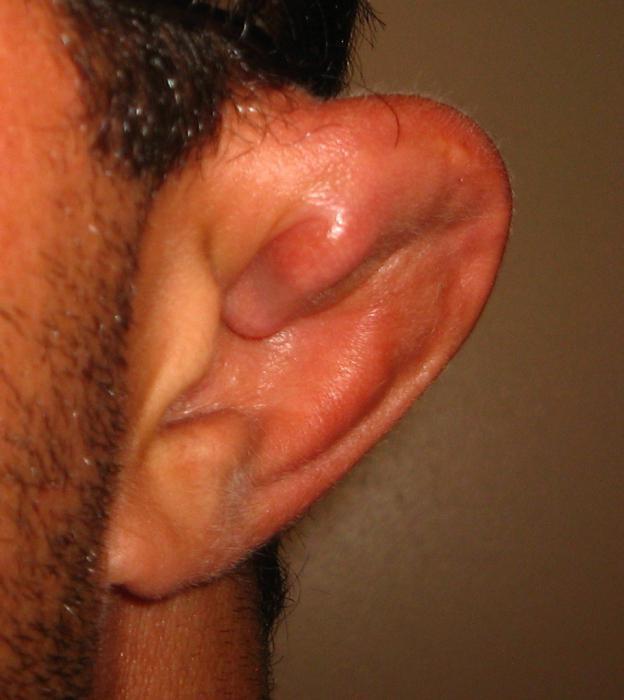 Занимался кто сексом в ухо