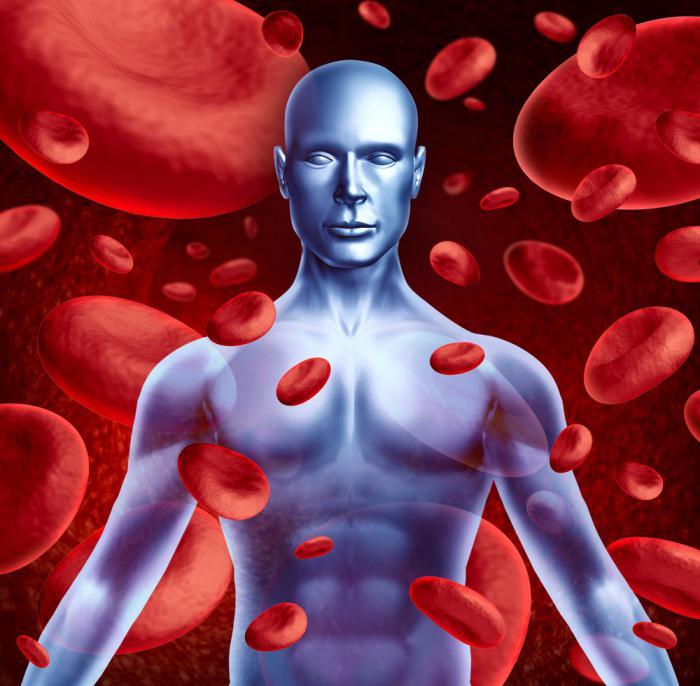 Плазма крови человека