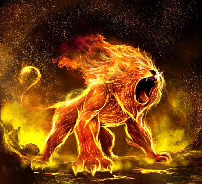 Новый год пройдёт под знаменем Огненного Петуха, а это значит, что ожидать от него спокойствия и грести по течению у нас не получится, так как символ года тоже обладает непростым нравом.