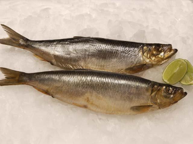 Копчение рыбы в домашних условиях жидкий дым