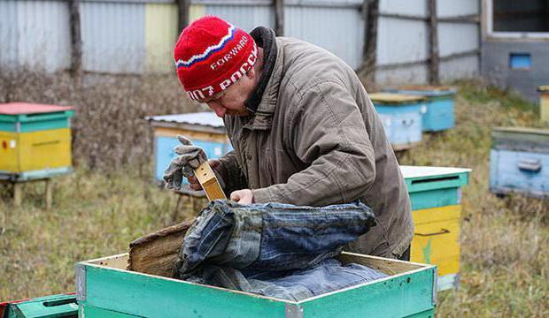 ученые республики татарстан по пчеловодству разработали